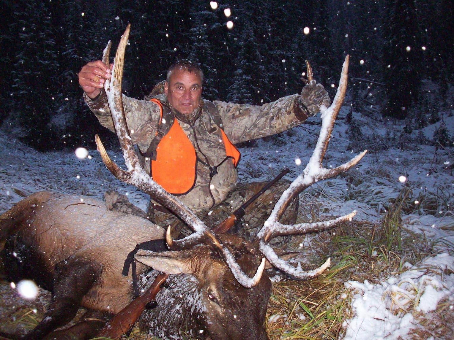 elk pic on snowy eve